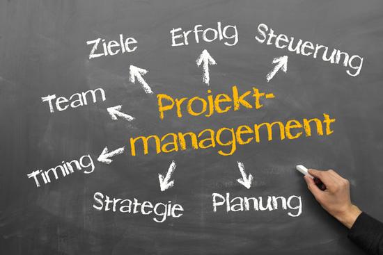 Projektmanagement Zu Microsoft Dynamics Nav Navision