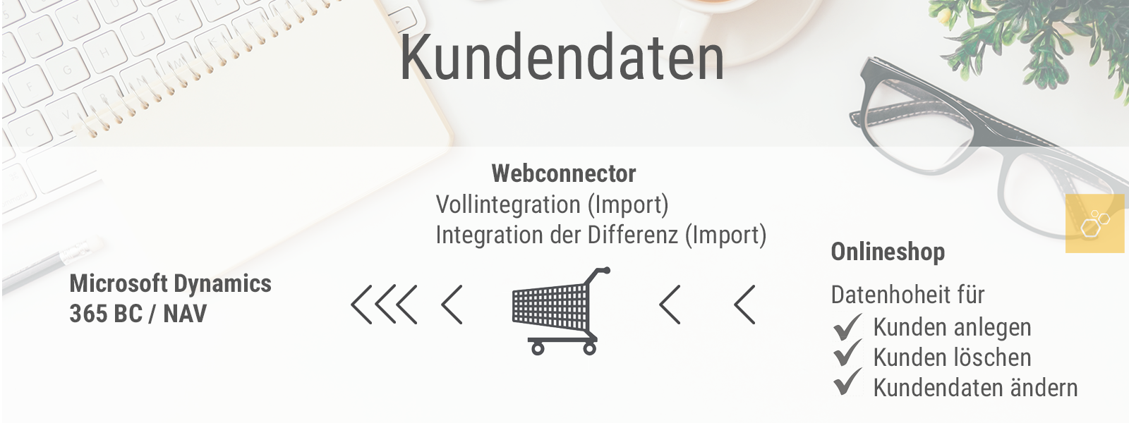 Webconnector-Kundendaten